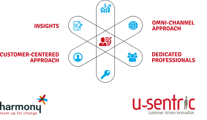 Consulting solution Customer centric implementation